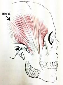 顎関節症説明
