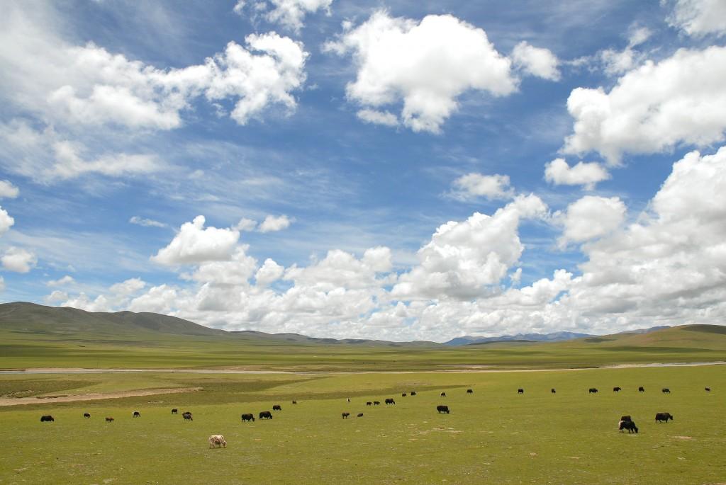 tibet_landscape
